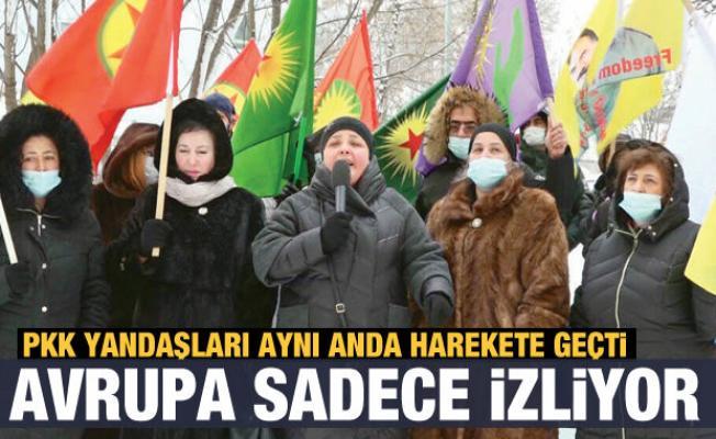 Avrupa aynı kafada: PKK eylemlerini sadece izlediler