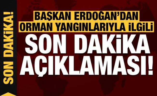 Başkan Erdoğan'dan orman yangınlarıyla ilgili son dakika açıklaması!