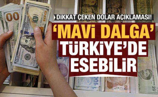 Dikkat çeken dolar açıklaması: 'Mavi dalga' Türkiye'de esebilir
