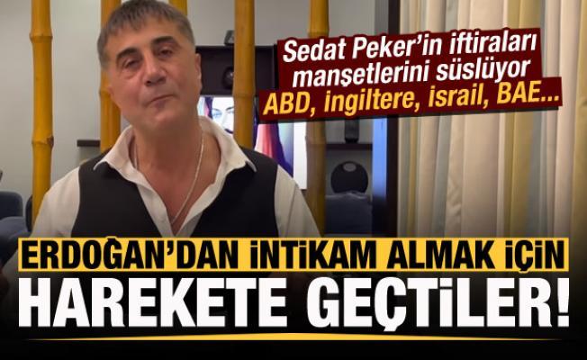 Erdoğan'dan intikam almak için Sedat Peker'in iftiralarına sığındılar!