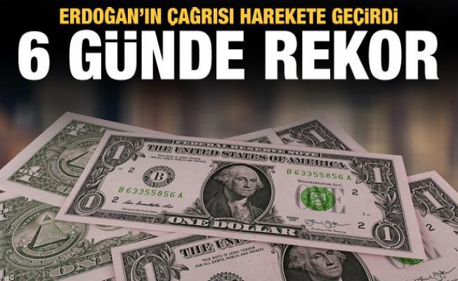 Erdoğan'ın çağrısı harekete geçirdi: 6 günde rekor satış
