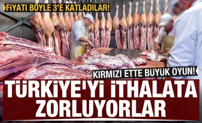 Ette fiyat oyunu: Türkiye'yi ithalata zorluyorlar