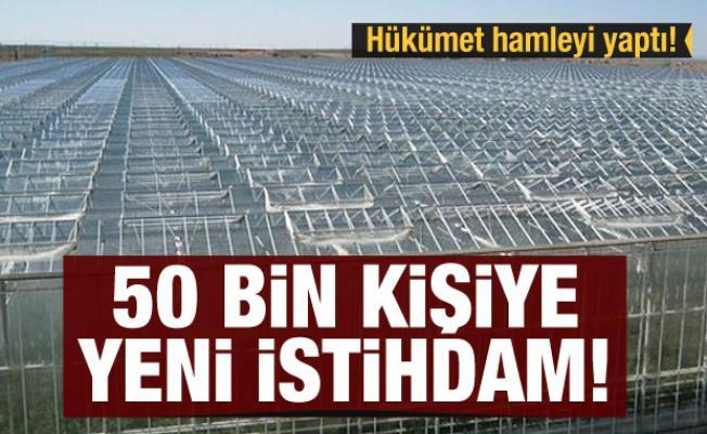 Hükümet hamleyi yaptı! 50 bin kişiye yeni istihdam