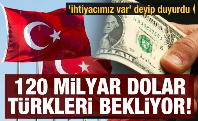 'İhtiyacımız var' deyip duyurdu: 120 milyar dolar Türkleri bekliyor!