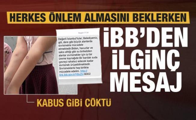 İstanbul'da sivrisinek kabusu! İBB önlem almak yerine bakın ne yaptı!