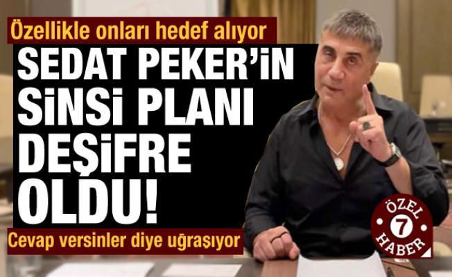 Sedat Peker'in sinsi planı deşifre oldu: Özellikle onları hedef alıyor!