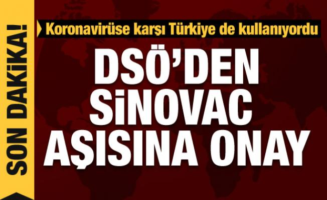 Son dakika haberi: DSÖ'den Sinovac'a onay
