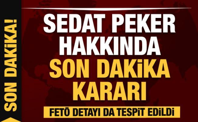Son dakika: Sedat Peker hakkında yakalama kararı! FETÖ detayı da tespit edildi