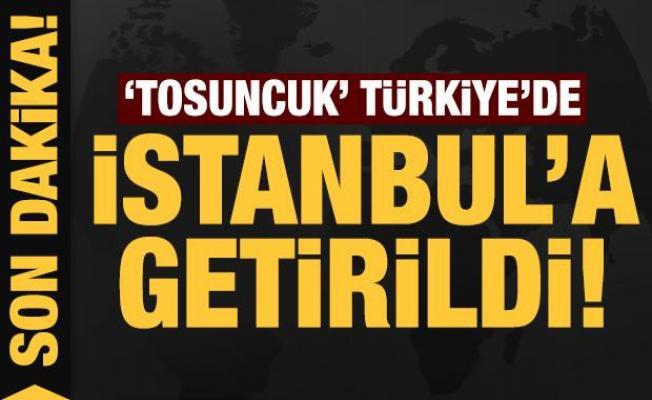 Son dakika: 'Tosuncuk' Türkiye'de: İstanbul'a getirildi!