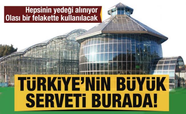 Türkiye'nin en büyük serveti! Tümünün yedeği alınıyor, bir felaket halinde kullanılacak