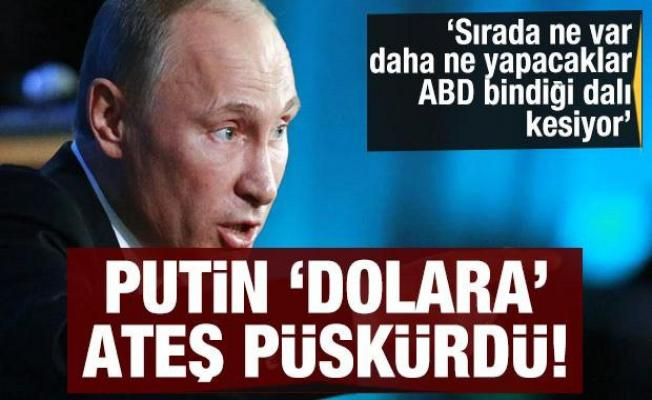 Putin dolara ateş püskürdü! Sırada ne var? ABD bindiği dalı kesiyor